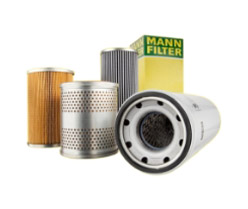 Mann Filter Img 1